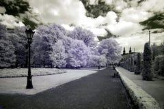 Park in Poznan Stock Image