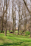 park Prague Obrazy Stock