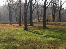 Park in Przemysl. Trees and grassin City Park in Przemysl Poland 2005 Stock Photography