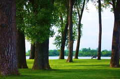 Park przy jeziorem Zdjęcia Royalty Free