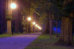 Park przy noc Obrazy Stock