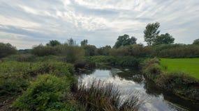 Park przy późnym wrześniem, widok rzeka Zdjęcie Royalty Free