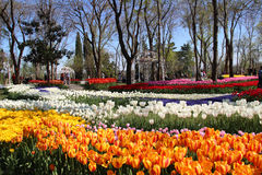 Park przy spring-2 Zdjęcia Stock