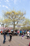 Park przy Zachodnim jeziorem, Hangzhou 05 Obraz Stock
