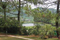 Park in Puncak, Indonesia Royalty Free Stock Photography