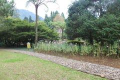 Park in Puncak, Indonesien lizenzfreies stockfoto