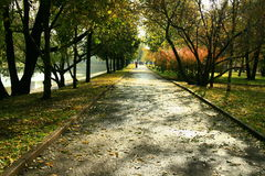 Park after rain Royalty Free Stock Images