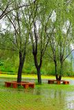 Park in the rain Royalty Free Stock Image