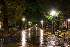 Park in a rain, night scene. Planty park in Krakow, Poland during humid wet and rainy autumn night Royalty Free Stock Photography