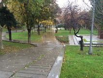 Park after rain Stock Photo