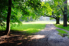 Park on rainy day Royalty Free Stock Photos
