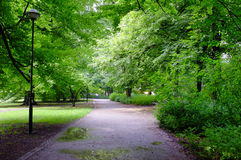 Park on rainy day Royalty Free Stock Images