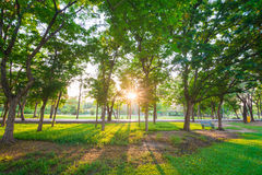 Park and recreation area in the city Royalty Free Stock Photos