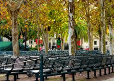 Park, recreation area. Rows of armchairs. royalty free stock image