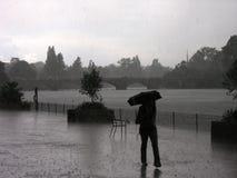 Park-regnerischer Tag Stockbild