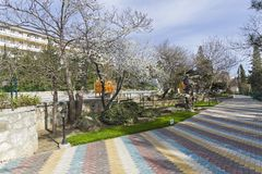 Park of resort hotel in the spring. Crimea. Royalty Free Stock Photo