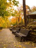 Park of rest in the autumn Royalty Free Stock Photos
