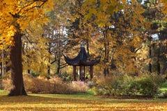 Park in Riga stock afbeelding