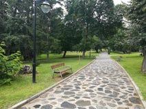 Park Rila, Dupnitsa, Bulgaria. Grass, tree, nature, relax, bench Stock Photo