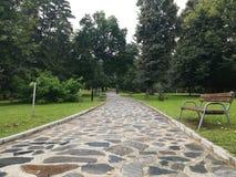 Park Rila, Dupnitsa, Bulgaria. Grass, tree, nature, relax, bench Royalty Free Stock Image