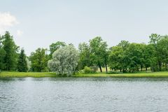 Park with river Stock Photography