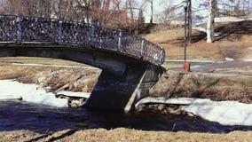 Park river bridge panning in spring stock video footage