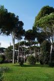 Park in Rome Stock Photo