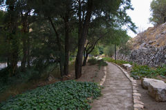 Park in Rosh Pinna town Stock Photo