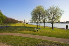 Park in Rotterdam Stock Image