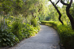 Park's pathway Royalty Free Stock Photography