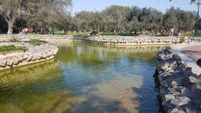 Park in San-isidro Peru Royalty-vrije Stock Foto's