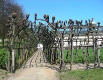 Park Sanssouci next to Sanssouci palace in Potsdam Royalty Free Stock Photos