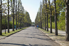 Park From Sanssoussi - Potsdam (Germany) Royalty Free Stock Photography