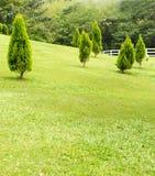 Park scene Stock Images
