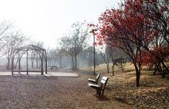 Park scene in Autumn season. Park scene. Autumn foggy landscape Royalty Free Stock Photography