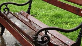Raining Bench Medium Shot