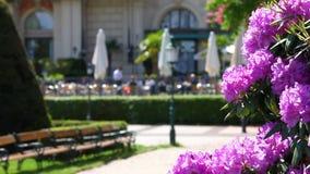 Park scene with garden restaurant stock video footage