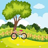 Park scene with pink bike by the fence. Illustration Stock Photography