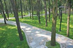 Park scenery Royalty Free Stock Photos