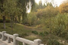 Park scenery. A beautiful and unique scenery in a park in China Stock Photos