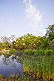 Park scenery Stock Photo