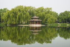 Park scenery, willow, willow, pavilion, the reflec Royalty Free Stock Photography