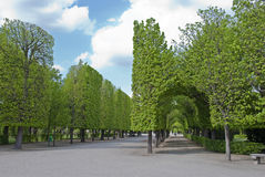 Park Schonbrunn Stock Afbeelding