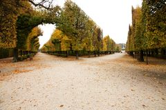 Park schonbrunn Royalty Free Stock Photography