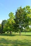 Park of the Sculptural Ensemble of Constantin Brâncuși at Târgu Jiu stock image