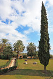 The park on the Sea of ��Galilee. Royalty Free Stock Image