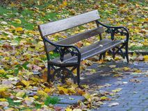 Park Seat in Autumn. Park seat surrounded by fallen leaves Stock Images