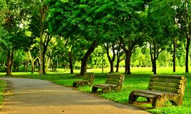 Park Seats, Pasir Ris Park, Singapore Royalty Free Stock Photography