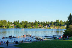 A park at Seattle. A lake park at Seattle royalty free stock photography