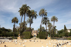 Park in Seville, Andalusia Spain Royalty Free Stock Image